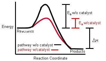 61- Collision Theory and Rate of Reaction - IB Chemistry